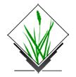 GRASS GIS